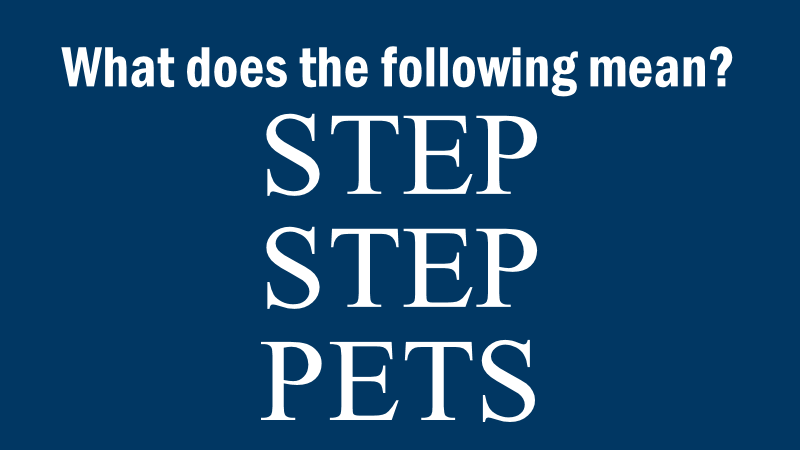 Riddle: Step Step Pets